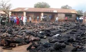 rohingya people burned a live
